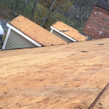 plywood on roof before applying shingles