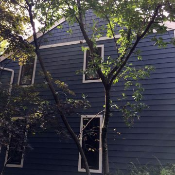 side of a house with new James Hardie siding